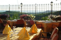 The terrace on the Valpolicella, you see Lake Garda